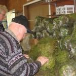 bagging moss
